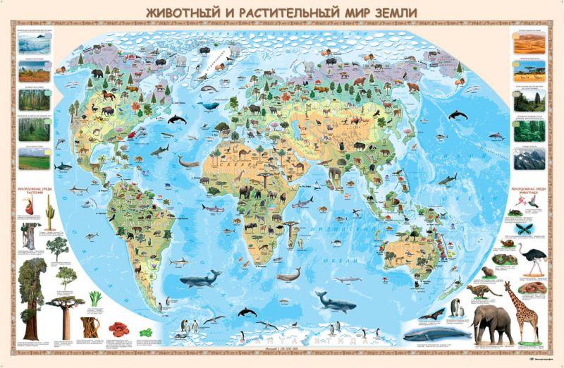 Животный и растительный мир Земли  100*66 настенная
